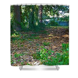 The Path Less Travelled Shower Curtain