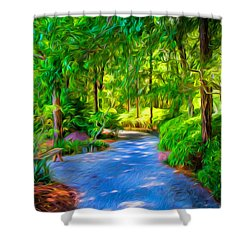 The Path Shower Curtain by Louis Ferreira