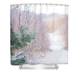 The Path Untraveled  Shower Curtain