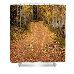 The Pathway To Fall Shower Curtain by Ronda Kimbrow