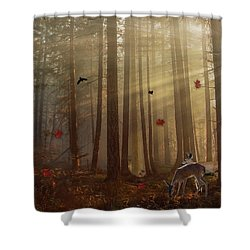 The Peace Of An Autumn Sunset Shower Curtain