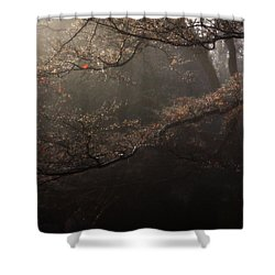 The Peaceful Mind Of All Wonderful People Shower Curtain