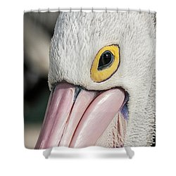 The Pelican Look Shower Curtain