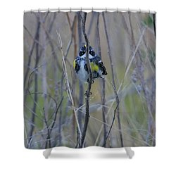 The Perfect Hiding Spot Shower Curtain