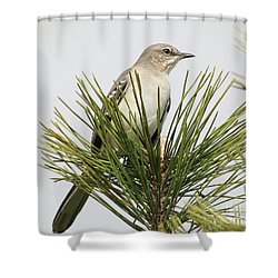 The Perfect View Shower Curtain