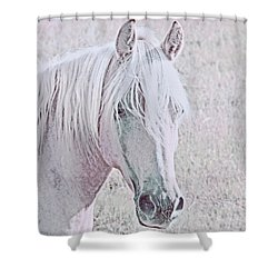 Shower Curtain featuring the photograph The Pink Horse by Jennie Marie Schell