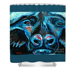The Poaching Stops Now Shower Curtain