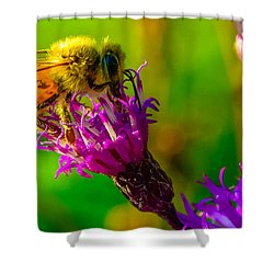Shower Curtain featuring the photograph The Pollinator 2 by Brian Stevens