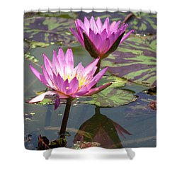 The Pond Shower Curtain by Amanda Barcon