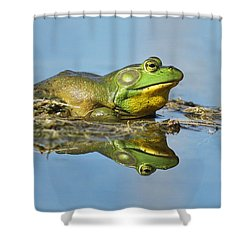 The Pond King Shower Curtain by Mircea Costina Photography