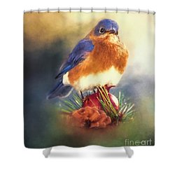 The Pondering Bluebird Shower Curtain