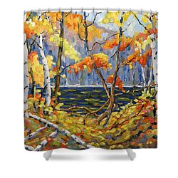 The Pool After Thompson By Prankearts Shower Curtain by Richard T Pranke