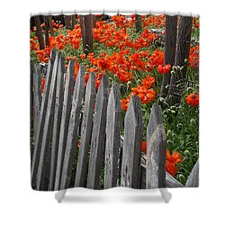 The Poppy Fence Shower Curtain