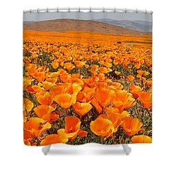 The Poppy Fields - Antelope Valley Shower Curtain
