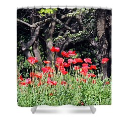 Shower Curtain featuring the photograph The Poppy Garden by Teresa Schomig