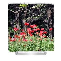 The Poppy Garden Shower Curtain by Teresa Schomig