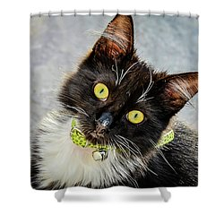 The Portrait Of A Cat Shower Curtain