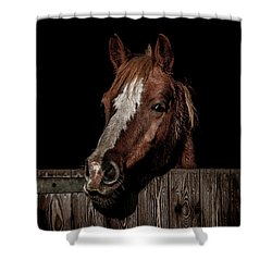 The Poser Shower Curtain