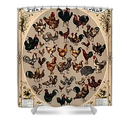 The Poultry Of The World 1868 Shower Curtain