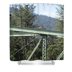 Shower Curtain featuring the photograph The Pretender by Marie Neder