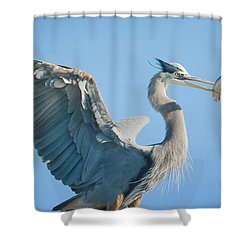 The Prize 6 Shower Curtain