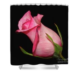 The Promise Of New Life Shower Curtain