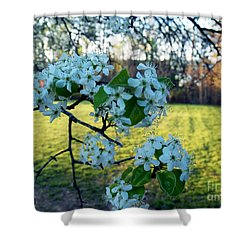 The Promise Of Spring 1c Shower Curtain