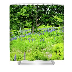 Shower Curtain featuring the photograph The Protector by Greg Fortier