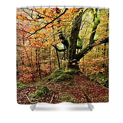 The Protector Shower Curtain by Jorge Maia