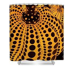 The Pumpkins Art Shower Curtain