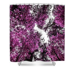 The Purple Forest Shower Curtain