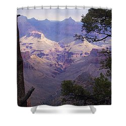 The Purple Grand Shower Curtain by Marna Edwards Flavell