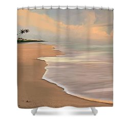 The Pursuit Of Happiness  Shower Curtain