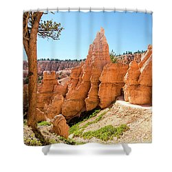 The Queens Garden Trail Shower Curtain