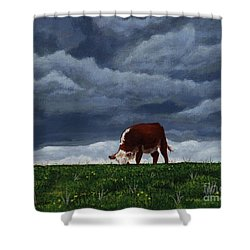 The Quiet Before The Storm Shower Curtain