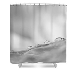 The Quiet Moments Between Breaths Shower Curtain