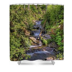 The Quinault Stream 2 Shower Curtain by Richard J Cassato