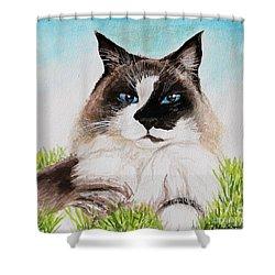 The Ragdoll Shower Curtain