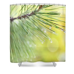 Shower Curtain featuring the photograph The Rain The Park And Other Things by John Poon