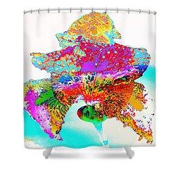 The Rainbow Iris Shower Curtain