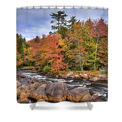 Shower Curtain featuring the photograph The Rapids On The Moose River by David Patterson