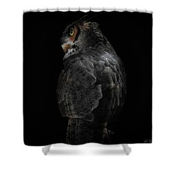 The Raptors, No. 11 Shower Curtain