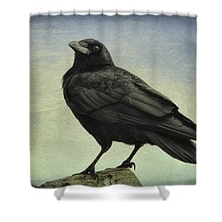 The Raven - 365-9 Shower Curtain by Inge Riis McDonald