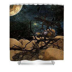The Raven King Shower Curtain