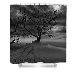 The Raven's Night Shower Curtain by James Christopher Hill