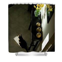 The Reception Hall Shower Curtain