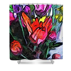 The Red Flower And The Rainbow Flowers Shower Curtain