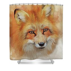 The Red Fox Shower Curtain by Brian Tarr