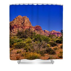 The Red Rock Canyon At Bonnie Springs Ranch Shower Curtain by David Patterson