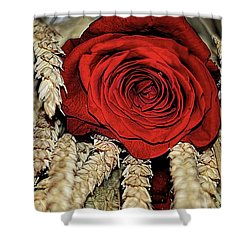 Shower Curtain featuring the photograph The Red Rose On A Bed Of Wheat by Diana Mary Sharpton